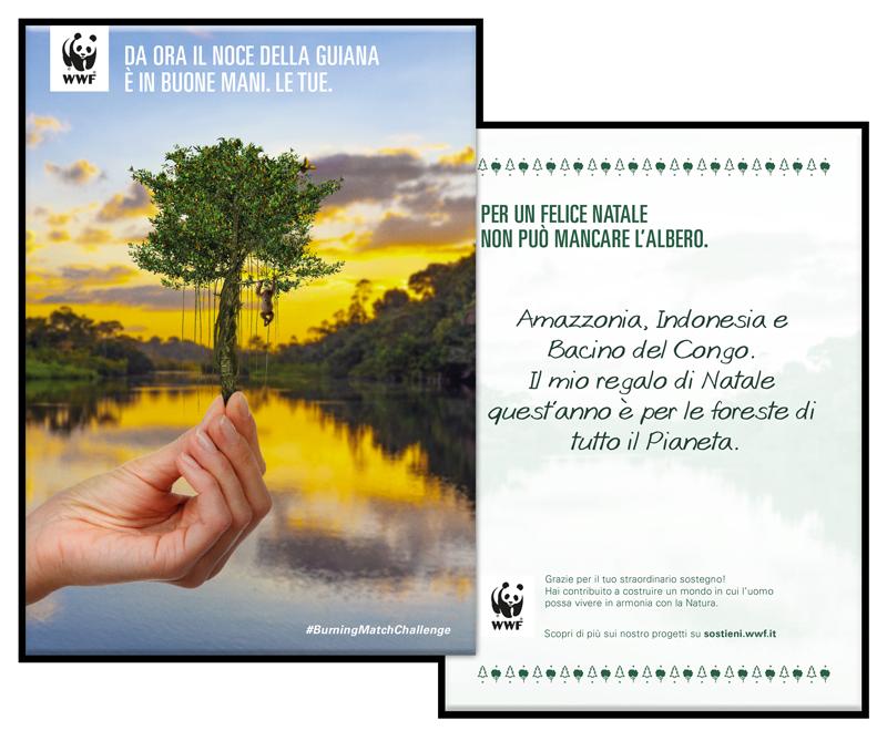 Dona ora per le foreste